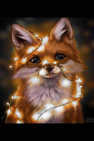 Tiên ánh sáng Fox