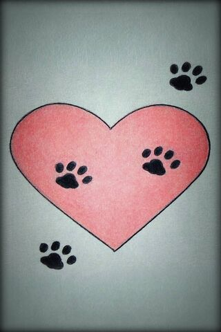 Heart Paw Prints