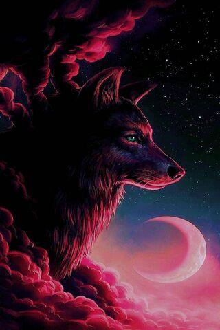 लाल भेड़िया