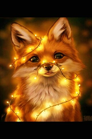 Fox Light