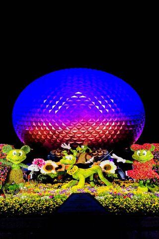 Disney World 16