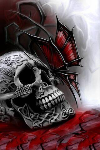 Dori Skull