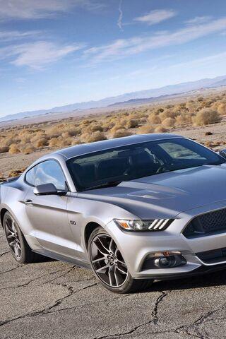 New Mustangg
