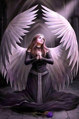 기도 천사
