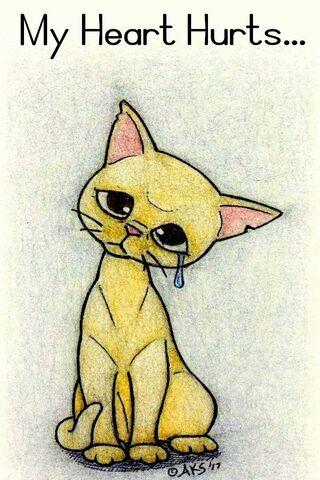 Heart Hurts Cat