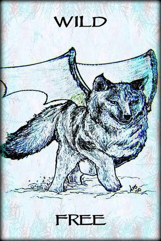 Wolf Wild Free Art