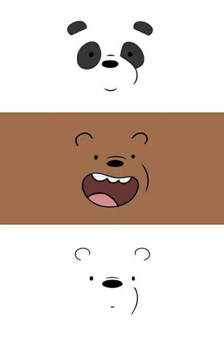 Kami Bears Bears