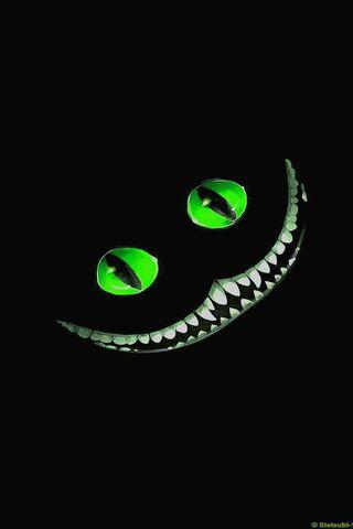 Mèo cười