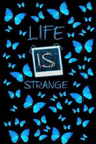 生活是奇怪的