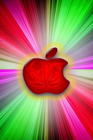 Panama Red Apple