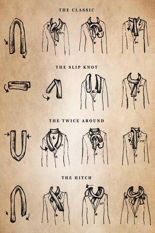 Scarves Ties