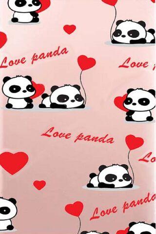 الباندا