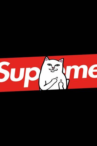 Chat suprême