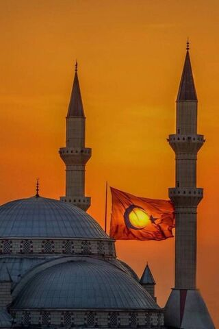 Mosque and Flag
