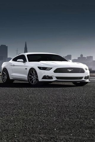Car Sport