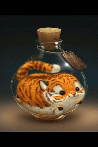 Cute Kawaii Tiger
