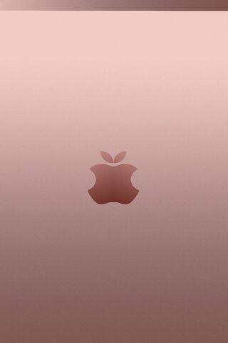 Rose Gold Apple