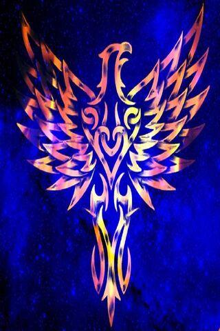 Fire Bird Blue Sky