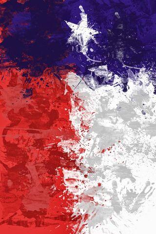 Bandiera del Texas