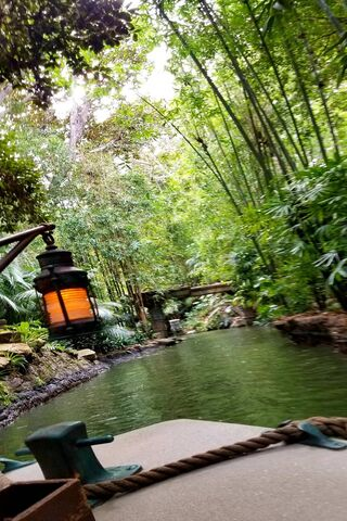 Jungle Cruise Wallpaper Download To Your Mobile From Phoneky
