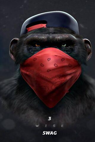 बंदर स्वैग की बात