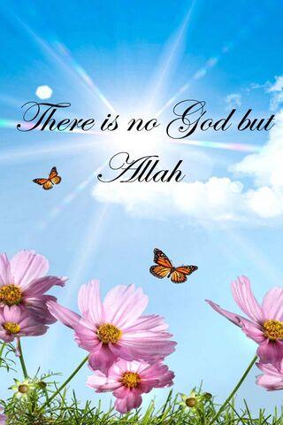 भगवान नहीं पर अल्लाह
