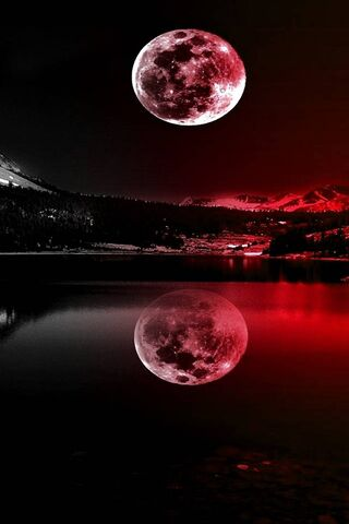 Red Moonlight