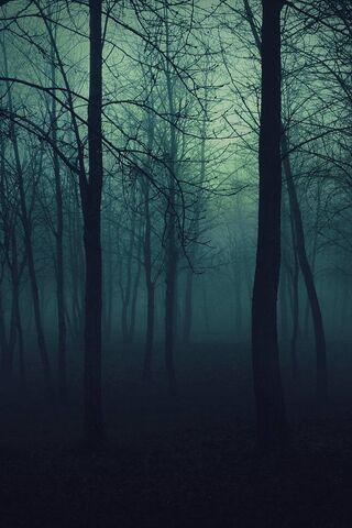 अंधेरे में