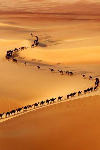 Dubai Wüsten