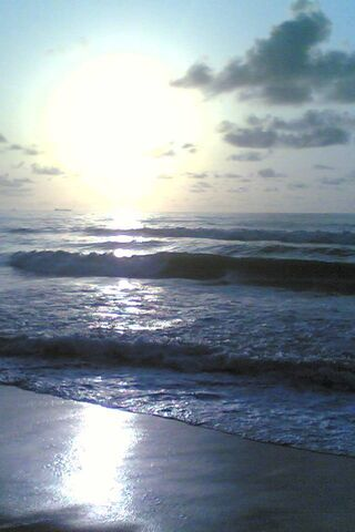หาดมารีน่า
