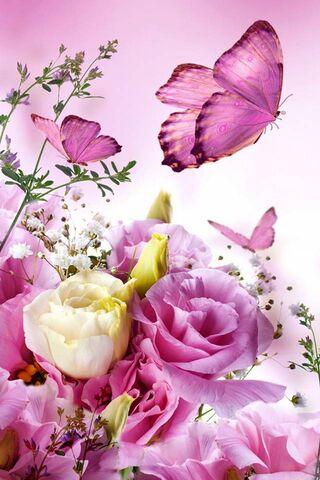 Rama-rama bunga