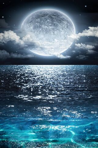 Морская луна