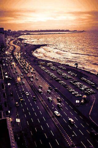 Alexandria Costroad