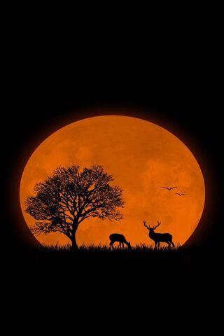 लाल चंद्रमा