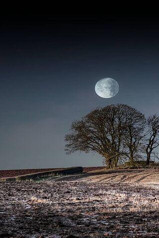 Güzel Ay Hd