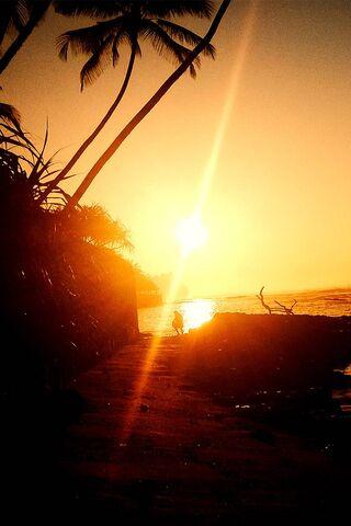 Phoneky أعلى تصنيف Sun Rise خلفيات من هذا الأسبوع