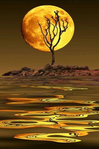 सोने का चाँद
