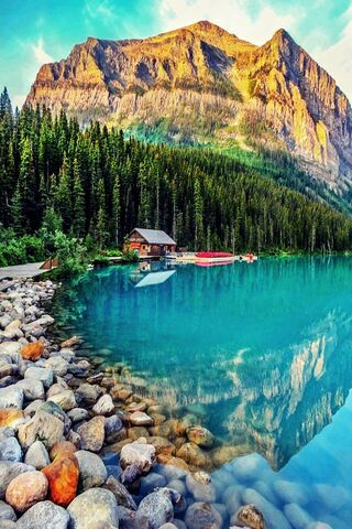 Piękna natura