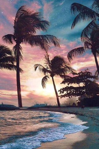 Plaj avuç içi günbatımı