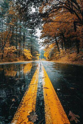 Camino mojado