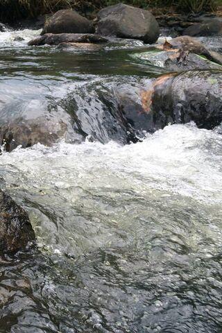 Water Rifki Subhan