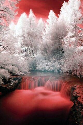 Przyroda Krajobraz