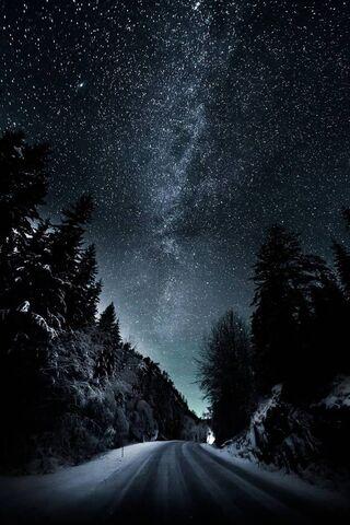 Black and Stars