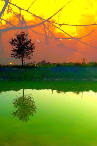 รักธรรมชาติยามพระอาทิตย์ตก