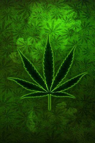 Марихуана обои для планшета женский род марихуаны