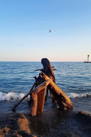Pantai Tings