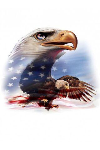 Cờ đại bàng Mỹ