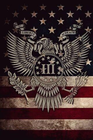 3 Eagle Antique Flag