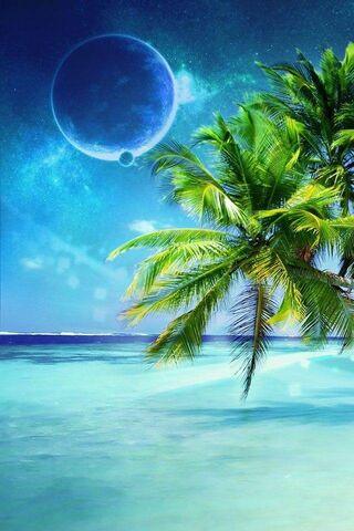 ชายหาดและดวงจันทร์