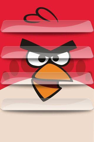 Red Angry Bird Shelf